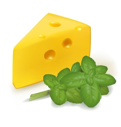 Cheese with basil vector