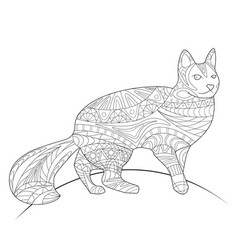 coloring book coloring page animal cat pattern vector image
