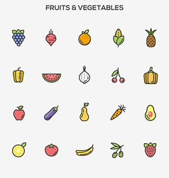 flat line color icons fruit and vegetables vector image