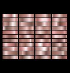 rose gold gradients vector image