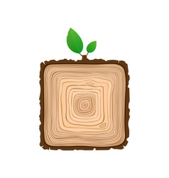 texture of square sawn wood brown object with vector image