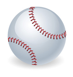 shiny baseball ball vector image
