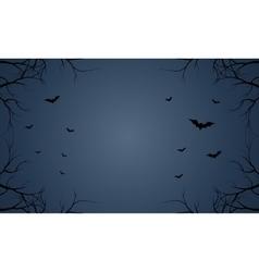 Bat flying Halloween in blue sky vector image