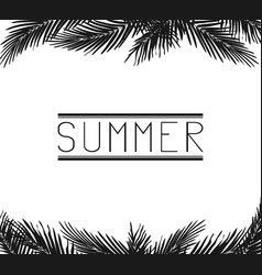 Inscription summer in the palm leaves vector
