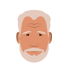 isolated man portrait vector image