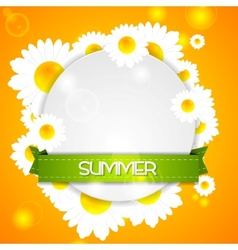 Summer design Camomiles and ribbon vector image