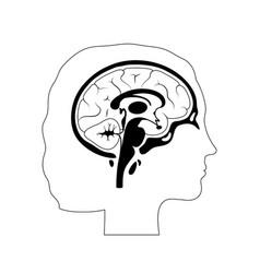 Woman brain anatomy vector