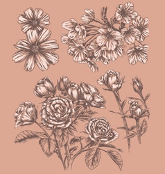 Detailed Sketchbook Hand Drawn Flower Set vector image