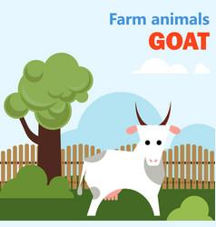 Farm animal goat vector