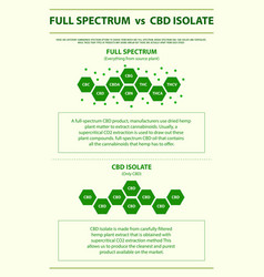 Full spectrum vs cbd isolate vertical infographic vector