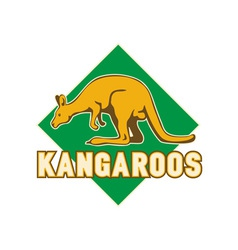 Kangaroo sports mascot shield vector