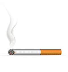 realistic burning cigarette on white vector image