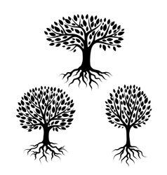Set abstract stylized trees with roots and vector