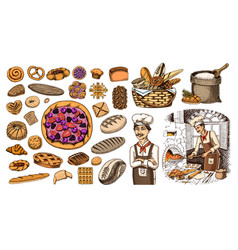 set of bakery products pastry chef and bag of vector image