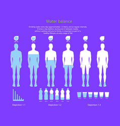 Water balance in human body vector
