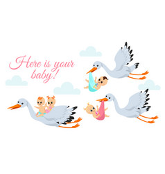 happy flying storks with vector image