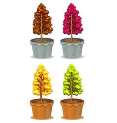Four pots of plants vector image vector image