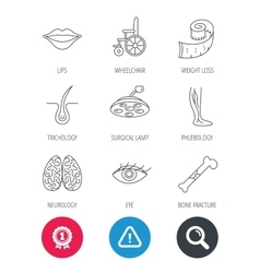 Eye neurology brain and vein varicose icons vector