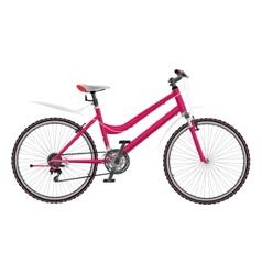 Ladys pink bike vector