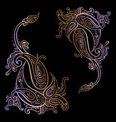 paisley hand drawn boho ornament vector image