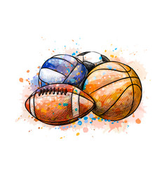 sport balls collection football basketball vector image