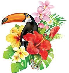 Tropical flowers and toucan vector