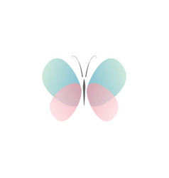 abstract butterfly with transparent color vector image