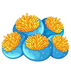 Blue coral reef with yellow flower vector