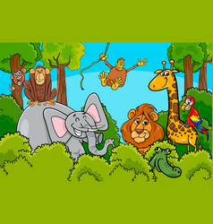 cartoon wild animal characters group vector image