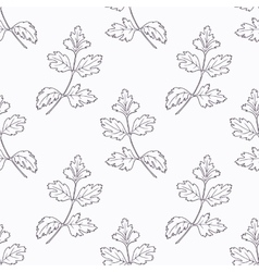 Hand drawn parsley branch outline seamless pattern vector image