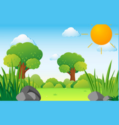 scene with trees on the field vector image