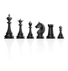 Set black chess pieces vector