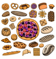 Set of bakery and pastry products bread and pie vector
