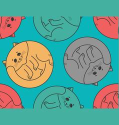 Sleeping cat seamless pattern home pet sleeps vector