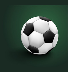 soccer ball isolated on green background sport vector image