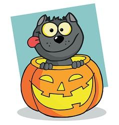 Happy Cat In A Pumpkin vector image