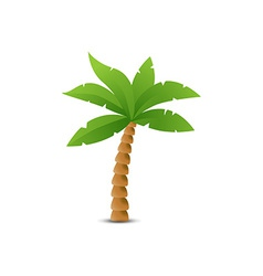 Tropical palm isolated on white vector image vector image