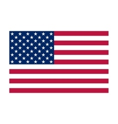 National political official US flag vector image vector image