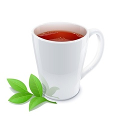 cup of tea with green tea vector image