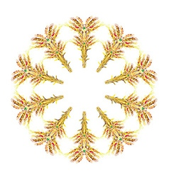 Corn and rye frame - round hand drawn design vector image
