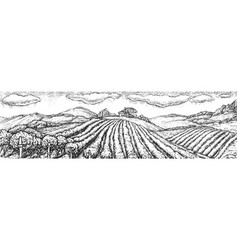Hand drawn vineyard seamless landscape sketch vector