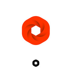 hexagon box logo web icon red diaphragm photo vector image