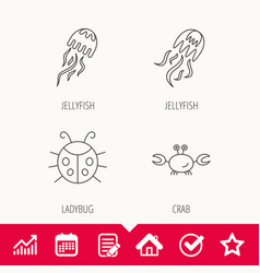 Jellyfish crab and ladybug icons vector