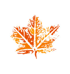 Maple leaf imprint grunge texture autumn colours vector