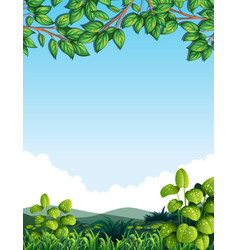 Nature with tree leaves vector
