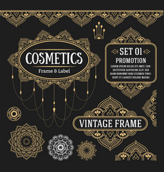 set retro vintage graphic design vector image
