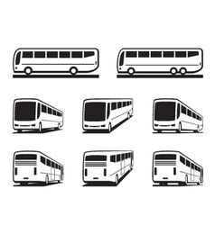 Tourist buses and coaches vector image