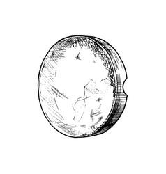 daf vector image vector image