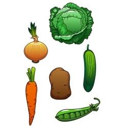 Fresh cartoon healthful isolated vegetables vector image