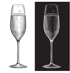 Glass champagne or sparkling wine hand drawn vector